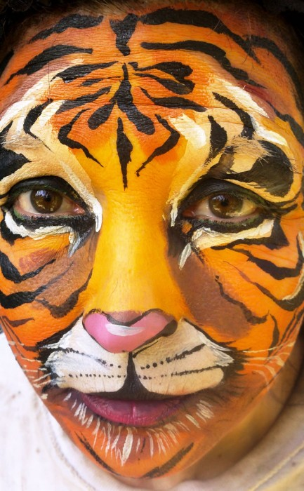 face painting animals 18